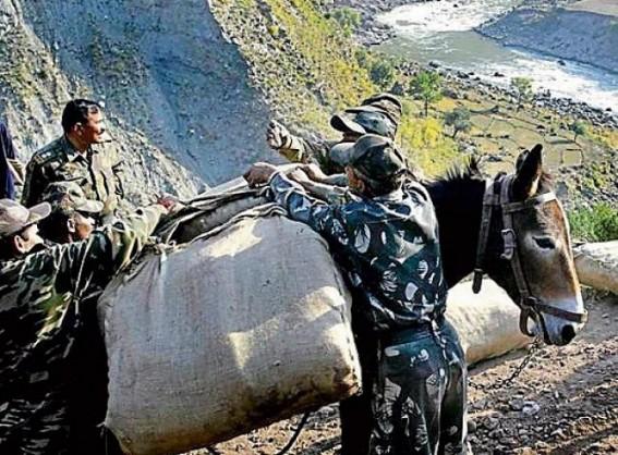 India's military mules: No road too treacherous