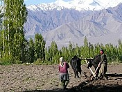 Modern farming techniques changing lives in Ladakh