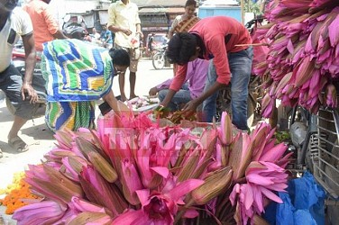 Tripura gears up to celebrate Manasa Puja. TIWN Pic Aug 16