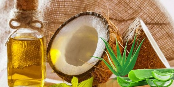 Care for Your Hair with Aloe Vera, Coconut Oil