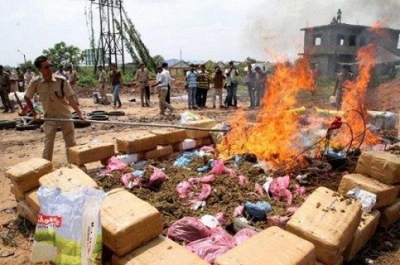 Tripura Police's rapid actions continue against drug-mafias : Massive seizure of contraband items reported in last 1-month