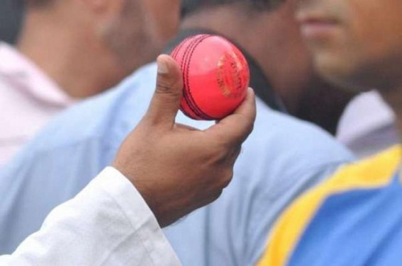 D/N Test: 'Pink balls have been hand stitched to aid reverse swing'