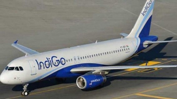 IndiGo profit jumps 168% to Rs 496 crore in Q3