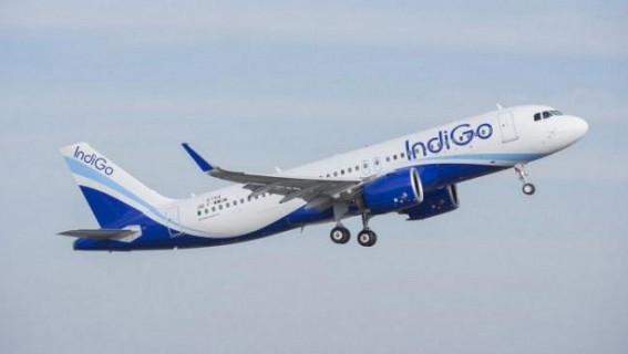 Safety First: DGCA to conduct audit of IndiGo, Vistara
