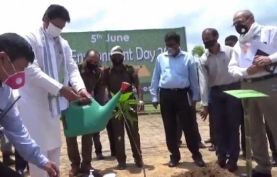 Tripura CM plants tree on World Environment Day, hails Northeast India's greenery